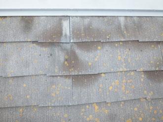 いすみ市 屋根点検 屋根材劣化