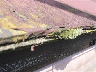 印旛郡酒々井町 屋根点検 塗装剥がれ