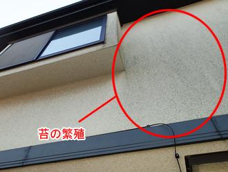 千葉県印旛郡酒々井町 屋根塗装 外壁塗装 点検の様子 外壁 苔の繁殖