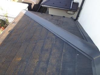 千葉県印旛郡酒々井町 屋根塗装 外壁塗装 点検の様子 1階の屋根 苔繁殖