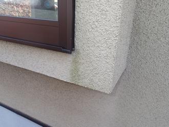 千葉県印旛郡酒々井町 屋根塗装 外壁塗装 点検の様子 サッシ周り 雨水 集中 苔
