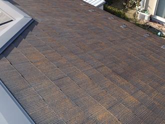千葉県印旛郡酒々井町 屋根塗装 外壁塗装 点検の様子 日当りの悪い屋根 苔大量発生