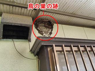 千葉県君津市 鳥の巣の跡