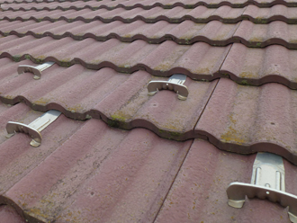 千葉県 市原市 屋根点検 瓦に発生した苔