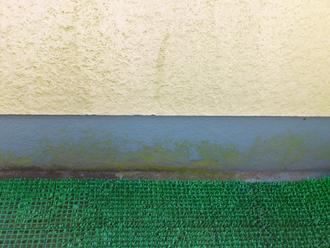 千葉県習志野市 屋根塗装 外壁塗装 点検の様子 ベランダ 苔 生えている
