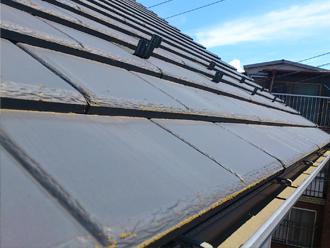 千葉県習志野市 屋根塗装 外壁塗装 点検の様子 屋根の苔