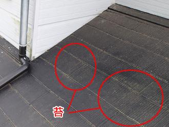 千葉県袖ヶ浦市 屋根塗装 棟板金交換 屋根点検 苔の発生