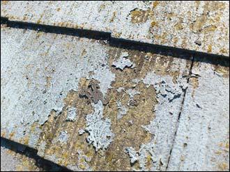 野田市 屋根点検 塗料剥離