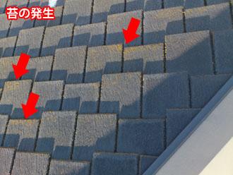 埼玉県 富士見市 屋根塗装 外壁塗装 バルコニー防水 点検 コロニアル(スレート)の苔