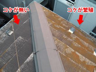 横浜市瀬谷区 棟板金交換  屋根塗装・外壁塗装 点検 屋根の面によってコケの生え方が違う