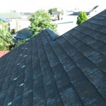 町田市 外壁塗装 屋根点検 苔の発生