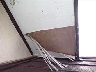 八千代市屋根、外壁カバー工事点検008