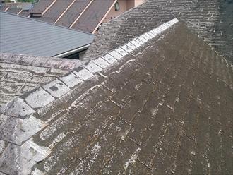 杉並区、屋根の状態