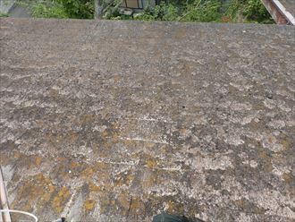 屋根,スレート,苔,劣化