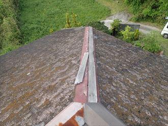 棟板金,飛散,貫板,屋根