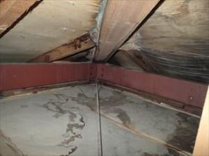天井,小屋裏,雨漏り,腐食,野地板