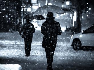大雪の場合に発生する災害