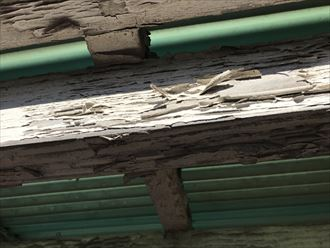 木材,傷み