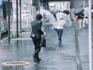 台風など強い風よって発生する災害