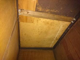 天井,雨漏り,剥がれ