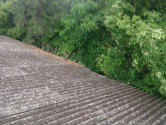 屋根,波板