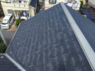 パミール,屋根