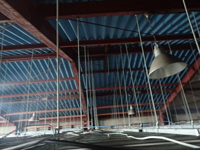 折板屋根,天井,雨漏り