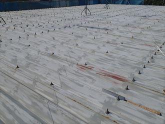 折板屋根,塗装前点検