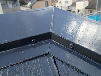 雨水を弾く屋根