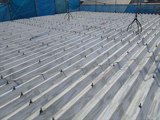 折板屋根塗装点検