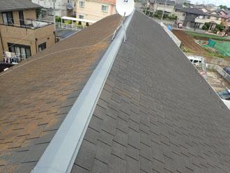 屋根の半分に苔が生えてしまった屋根