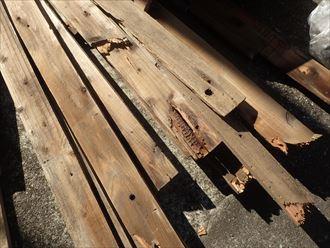 既存貫板の経年劣化を確認