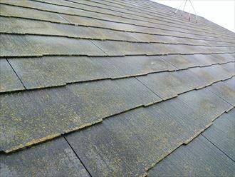 築10年経過したスレート屋根