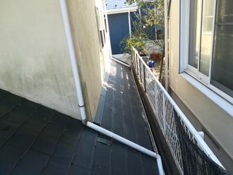 苔が繁殖してしまった外壁