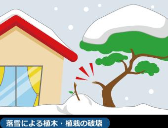 植木や植栽に雪が積もると雪の重みで枝が折れてしまったり、もがれてしまう