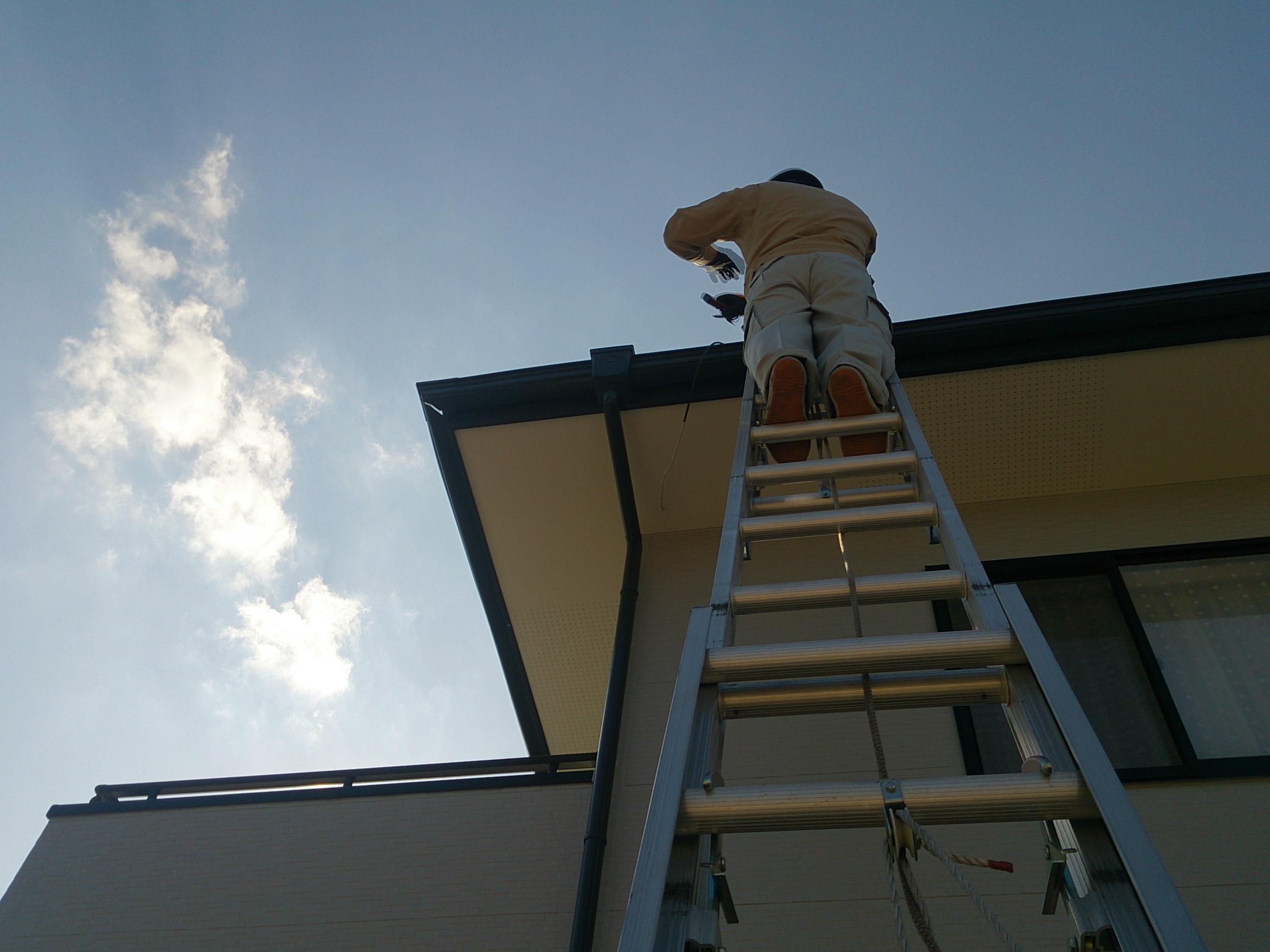 はしごを使った雨樋点検の様子