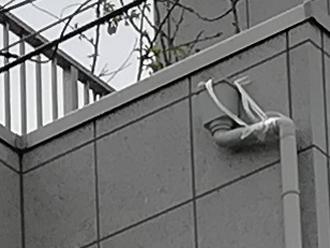 紐で吊られていた竪樋