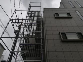屋上に届くほどの高さ