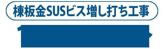 棟板金SUSビス増し打ち工事1m1500円~