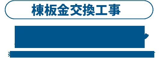 棟板金交換工事1m5500円~