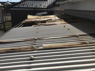 足立区保木間で台風被害調査