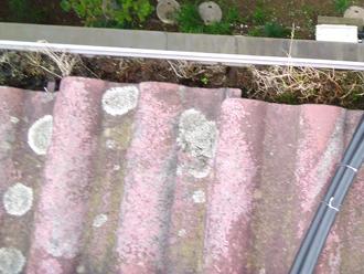 土ゆ落葉の溜まった雨樋