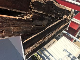 木材の腐り