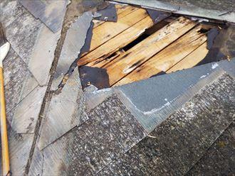 大網白里市 屋根補修工事前
