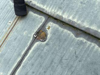 スレート屋根材塗膜の剥がれ