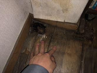 床面も穴が開いてしまっています