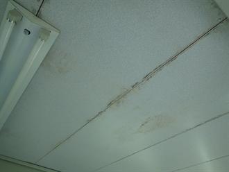 木更津市 雨漏りによる染み